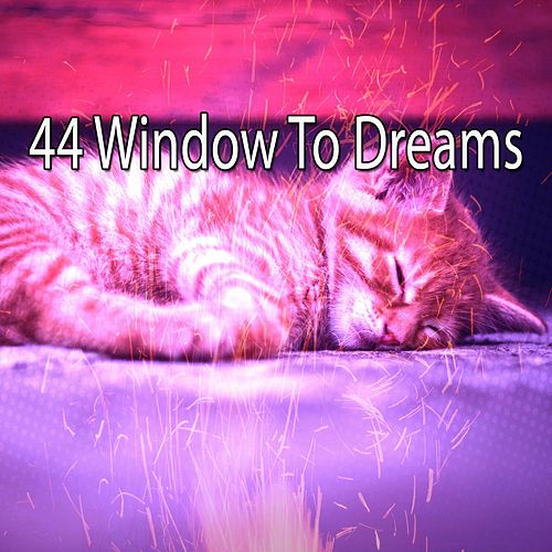 44 Window to Dreams de Spa Relaxation