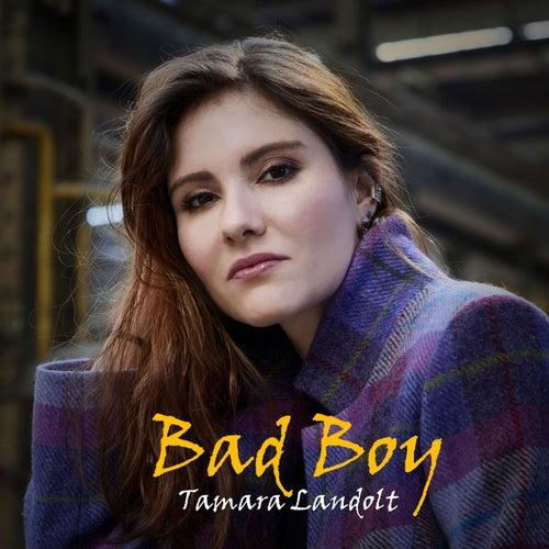 Bad Boy by Tamara Landolt