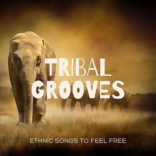 Tribal Grooves: Peaceful Ethnic Songs to Feel Free by Kapa Nyolo