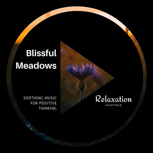 Blissful Meadows - Soothing Music for Positive Thinking von Massage Music