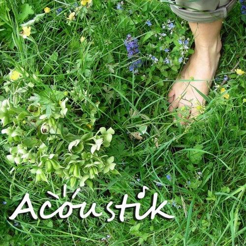 Les pieds dans l'herbe von Acoustik