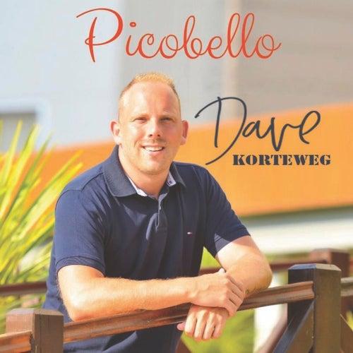 Picobello van Dave Korteweg