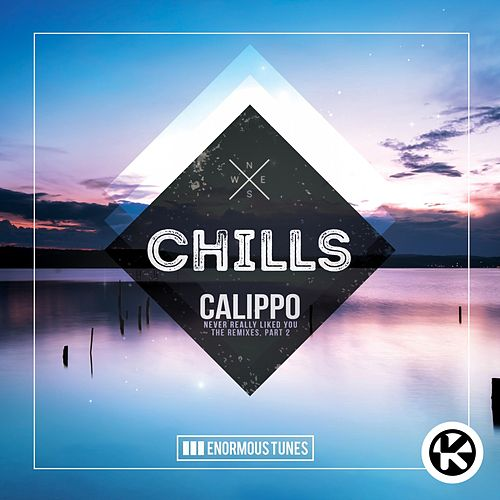 Never Really Like You (Paige & Space Disco Remix) von Calippo