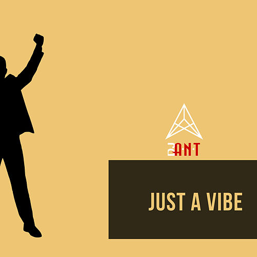 Just a Vibe by DJ Ant