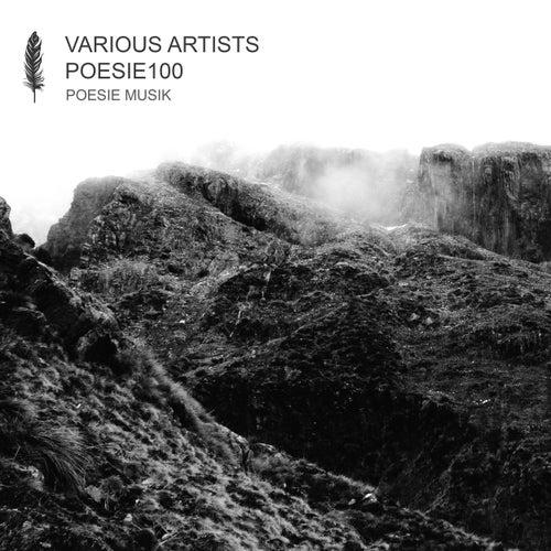 POESIE100 von Various Artists