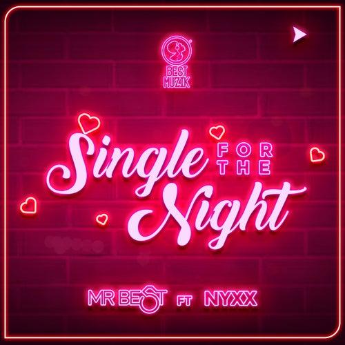 Single for the Night de Mr. Best