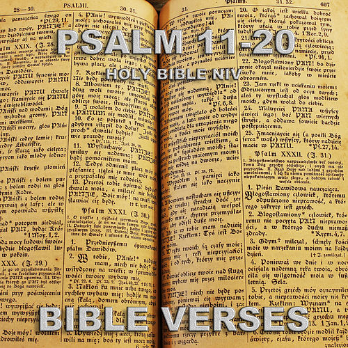 Holy Bible Niv Psalm 11-20 by Bible Verses