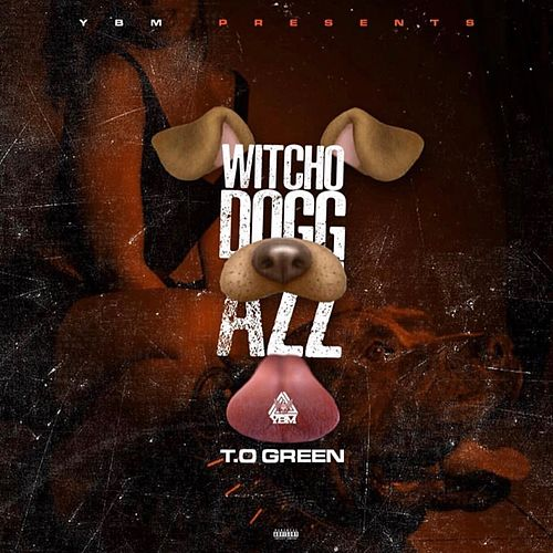 Witcho Dogg Azz von T.O Green