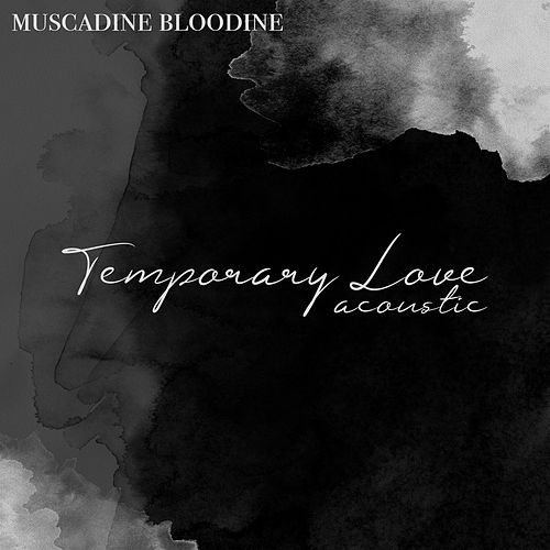 Temporary Love Acoustic by Muscadine Bloodline