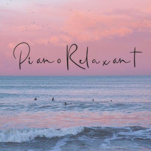 Piano relaxant : Le meilleur du piano classique fra Various Artists