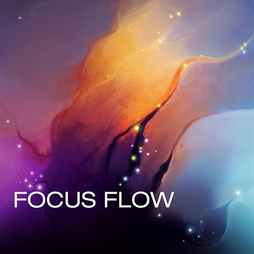 Focus Flow by Various Artists