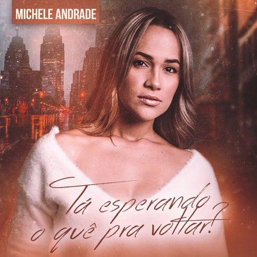 Tá Esperando o Quê pra Voltar? de Michele Andrade
