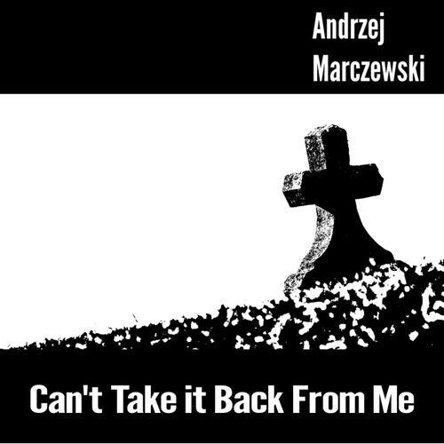 Can't Take It Back from Me by Andrzej Marczewski
