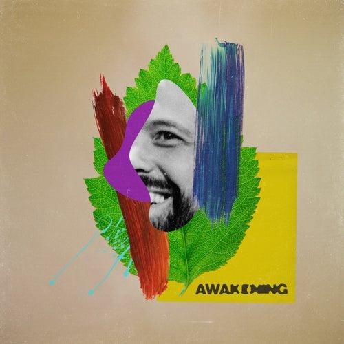 Awakening by Mikos Da Gawd