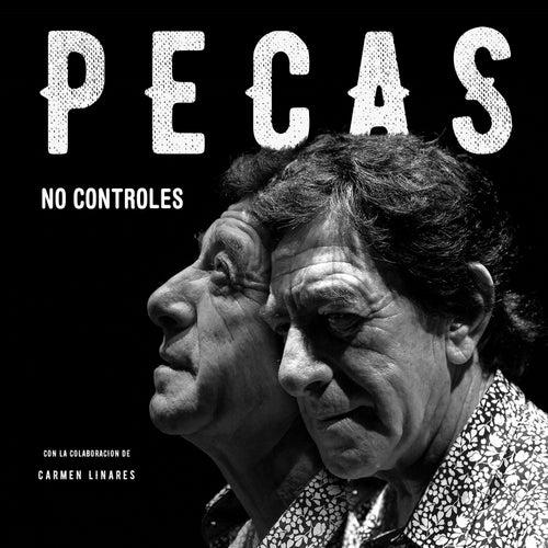 No Controles von Pecas