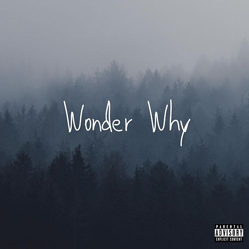 Wonder Why by Derrion Hodges