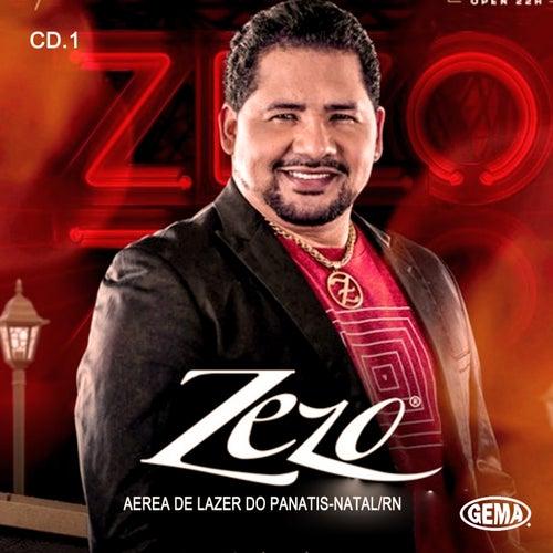 Ao Vivo Em Panatis von Zezo