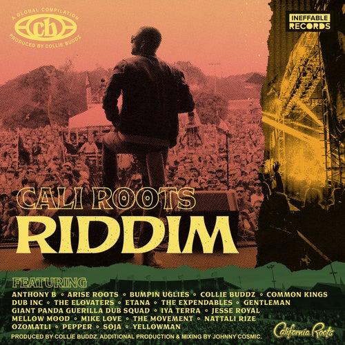 Cali Roots Riddim 2020 de Collie Buddz