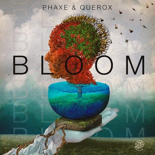 Bloom von Phaxe