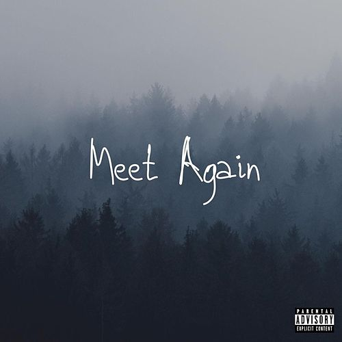 Meet Again by Derrion Hodges
