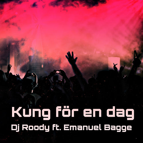 Kung För En Dag (Radio Edit) by DJ Roody