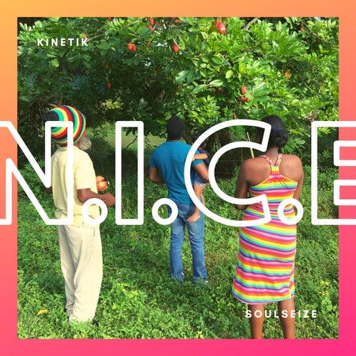 N.I.C.E. by Kinetik