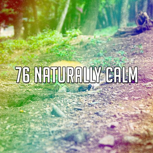 76 Naturally Calm by Deep Sleep Music Academy