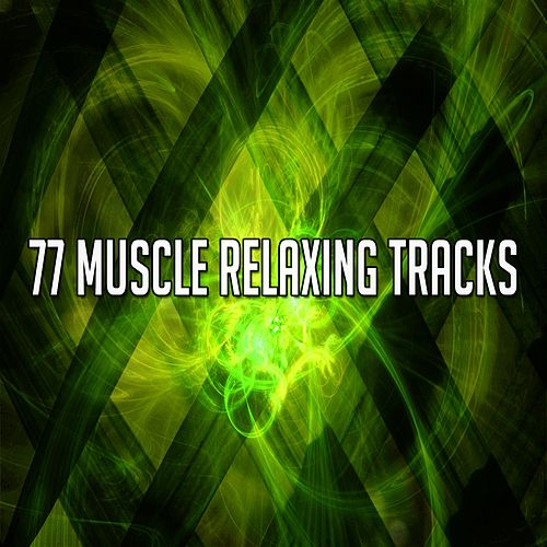 77 Muscle Relaxing Tracks de Massage Tribe