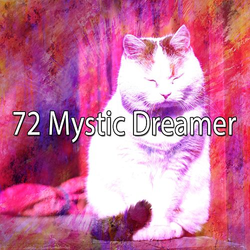 72 Mystic Dreamer de Spa Relaxation