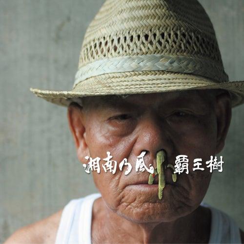 Saboten von Shounanno Kaze