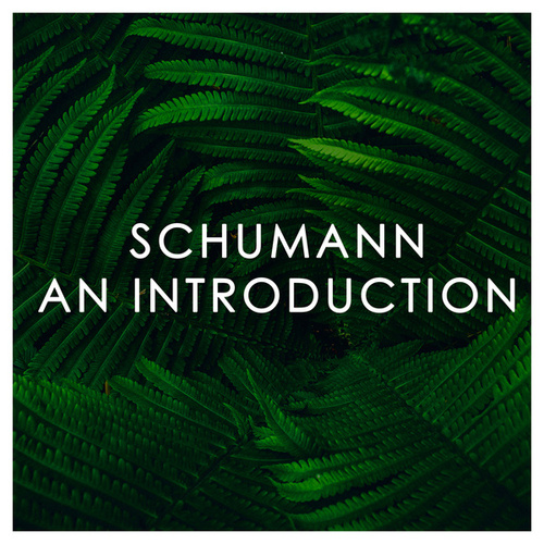 Schumann: An Introduction de Robert Schumann