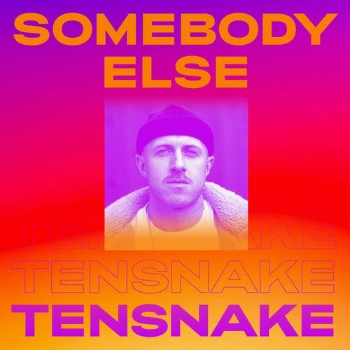 Somebody Else de Tensnake
