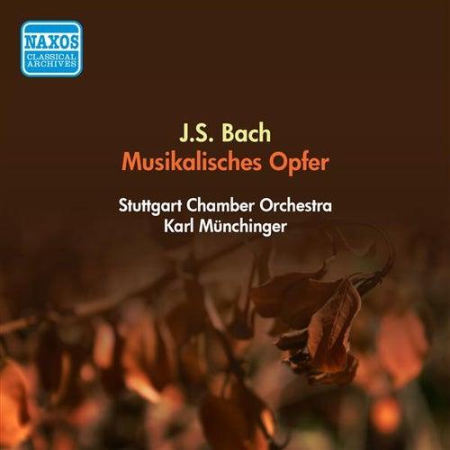 Bach, J.S.: Musical Offering, Bwv 1079 (Stuttgart Chamber Orchestra, Munchinger) (1955) von Karl Munchinger