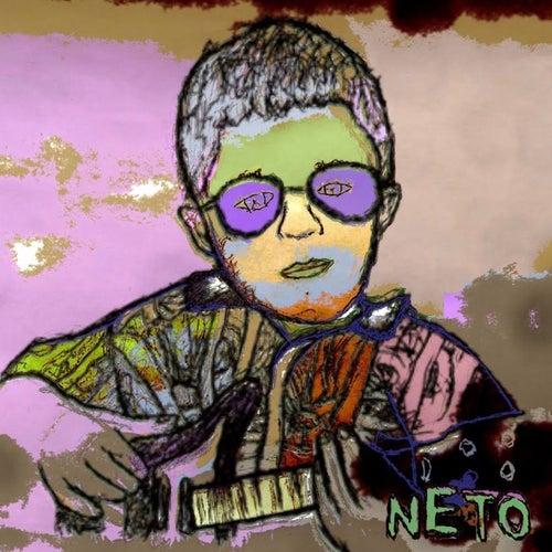 Man Of The House de Neto