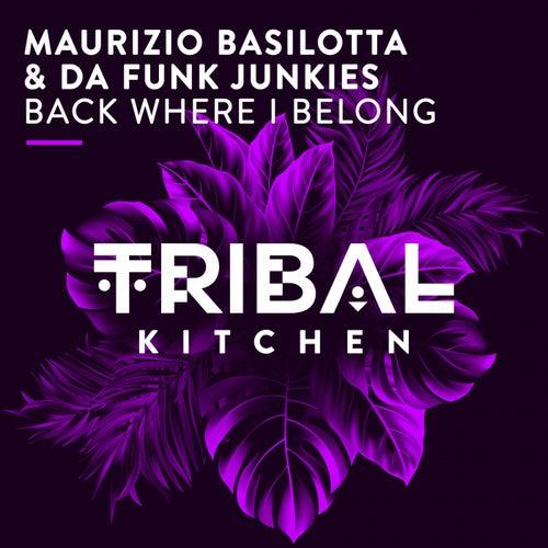 Back Where I Belong by Maurizio Basilotta