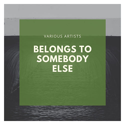 Belongs To Somebody Else de Various Artists