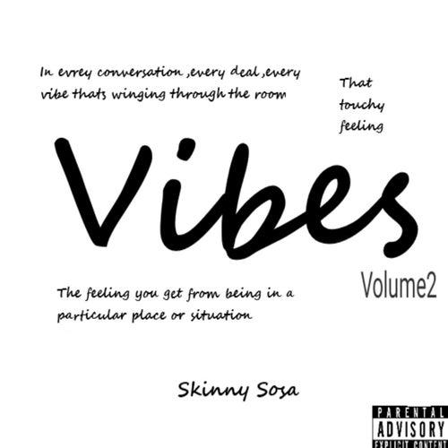 Vibes Volume 2 by Skinny Sosa