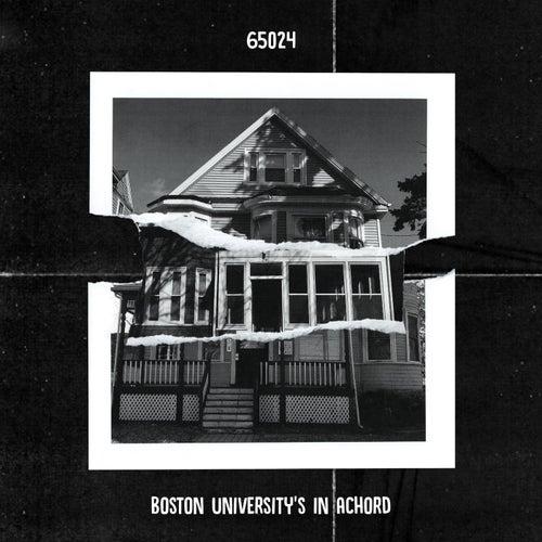 65024 by Boston University's In Achord