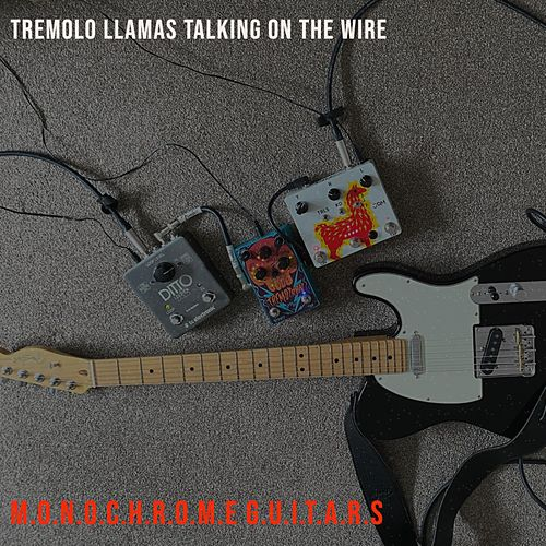 Tremolo Llamas Talking on the Wire by Monochrome Guitars