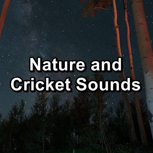 Nature and Cricket Sounds de Nature Sound Collection