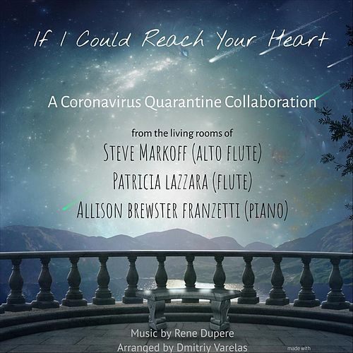 If I Could Reach Your Heart de Patricia Lazzara Steve Markoff