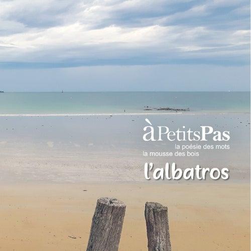 L'albatros de A Petits Pas