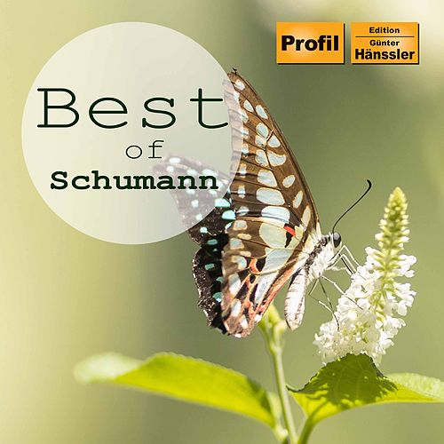 Best of Schumann by Jeno Jando