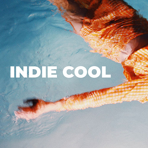 Indie Cool de Various Artists
