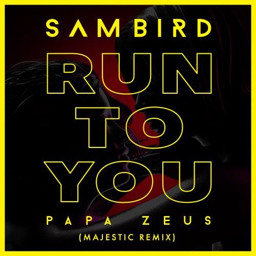 Run To You (Majestic Remix) de Sam Bird