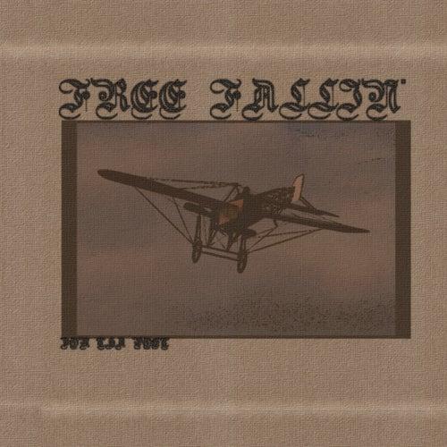 Free Fallin' de Don Tha Poet