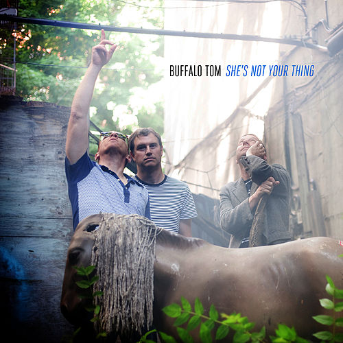 She's Not Your Thing von Buffalo Tom
