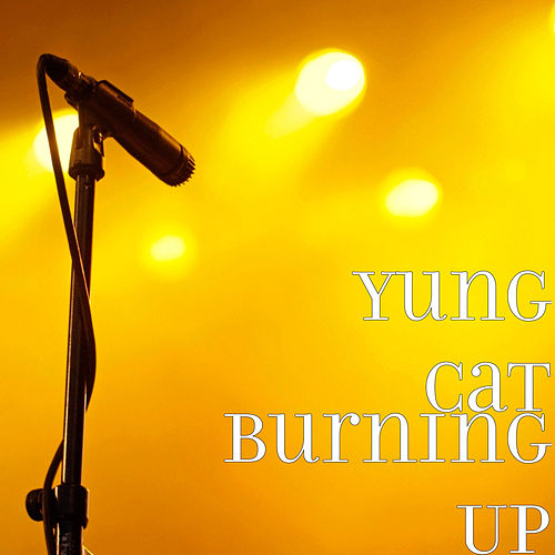 Burning Up by Yung Cat
