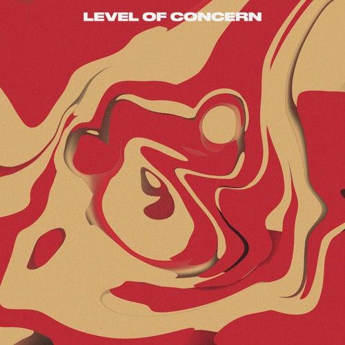 Level of Concern (Cover) fra Kae-Dama