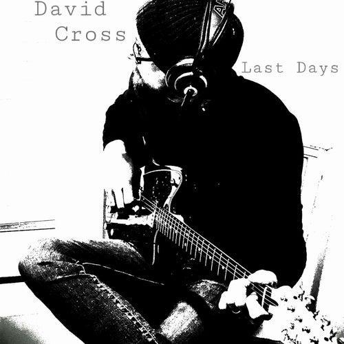 Last Days by David Cross